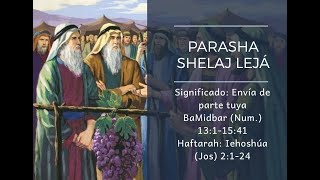 Transmisión de Shabat - Porción 37 SHELAJ LEJÁ