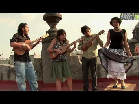 RAMITA DE CEDRO - LOS JUILES (BalconyTV)
