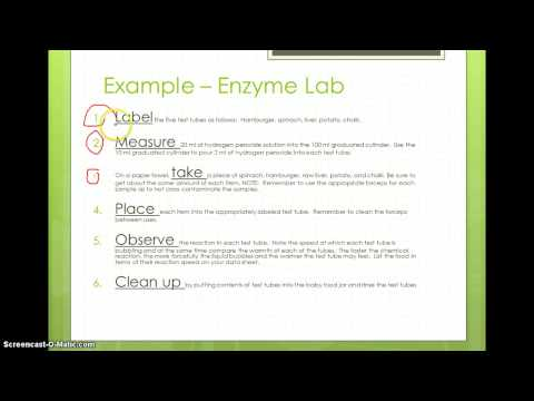 writing a lab report procedure Scientific writing activity can you write a clear lab procedure free subject graphic organizer for writing science lab reports.