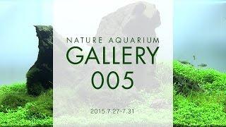 [adaview] Nature Aquarium Gallery#005(en)