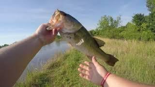 Memphis Bass Fishing