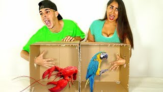 What's In The BOX Challenge!!! (LIVE ANIMALS GONE WRONG)