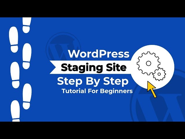 How To Create a WordPress Staging Site with the WP Staging Plugin
