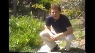 Shack Daddys & Gator Ribs At Alligator Alley (2004)