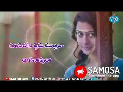 Rx100 Pillara  Female Song