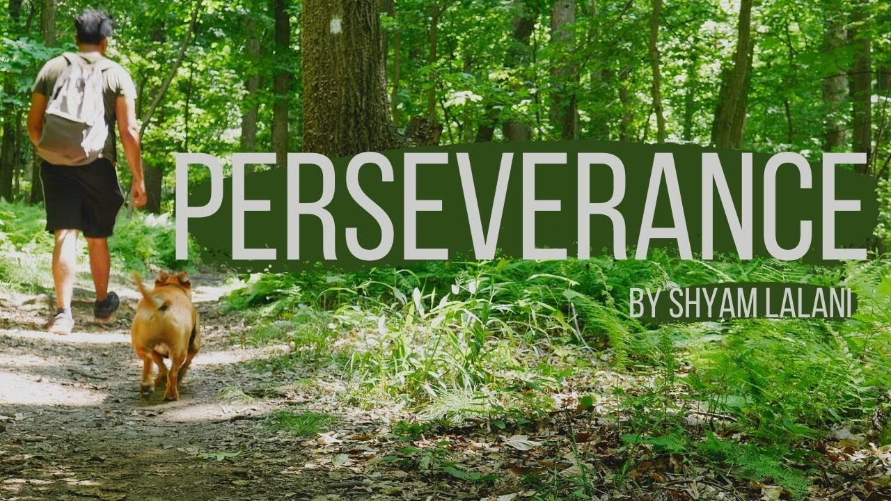 My Thoughts On Perseverance | A Nature Film | By Shyam Lalani
