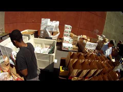 YXP Mass Food Distribution