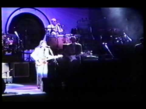 """George Harrison - Eric Clapton """"Something"""" from Live In Japan 1991"""