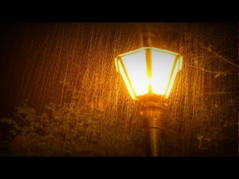 ☔ Nature Sounds: Heavy Rainstorm at Night (realtime audio recording)