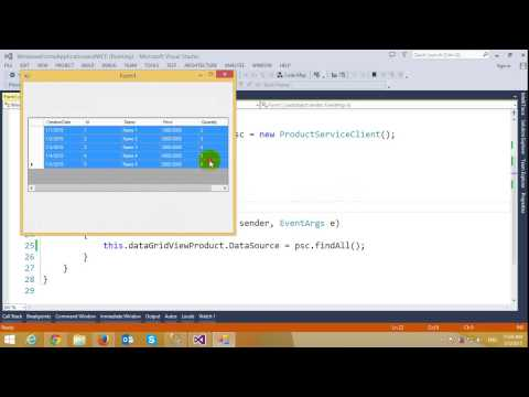 Calling WCF Services and Entity Framework in Windows Forms Application