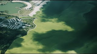 Toxic Algae and the Climate Conundrum - Great Lakes Now - 1013 - Segment 1
