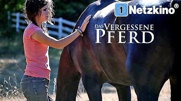 Das vergessene Pferd - Saving Winston (Drama, Pferdefilm, ganzer Film) *HD*