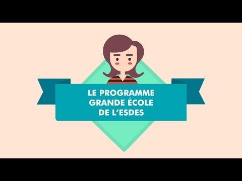 Programme Grande École - ESDES