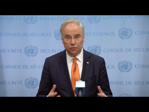 Karel van Oosterom (Netherlands, Security Council President) on DR Congo - Media Stakeout (7 March)