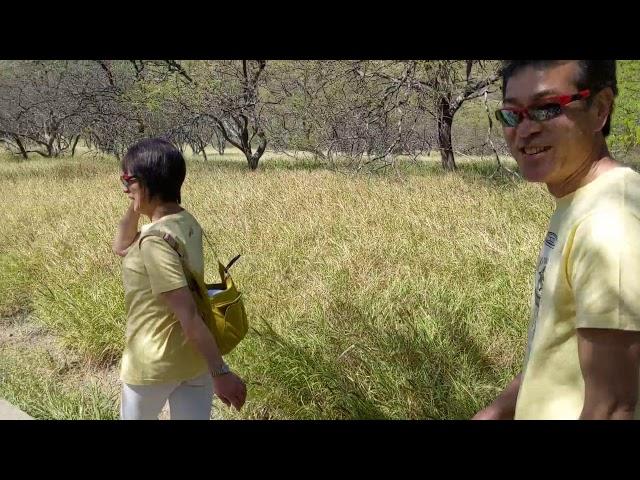 URB-E Hawaii Diamond Head Ride & Hike 2/9/2020