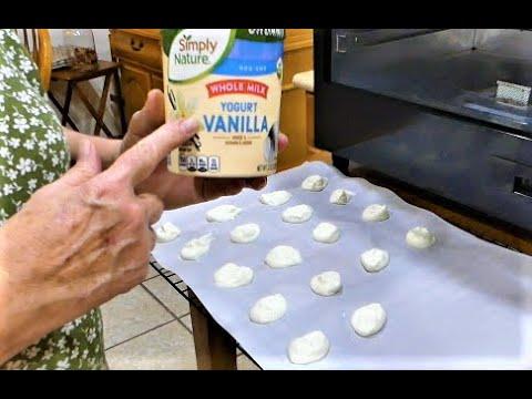 Making Healthy Tasty Snacks In The Dehydrator | Yogurt