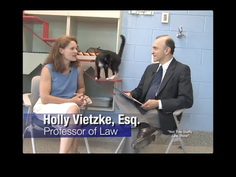 "Animal Law, and Tort law - ""The Not Too Stuffy Law Show"" - Episode 1"