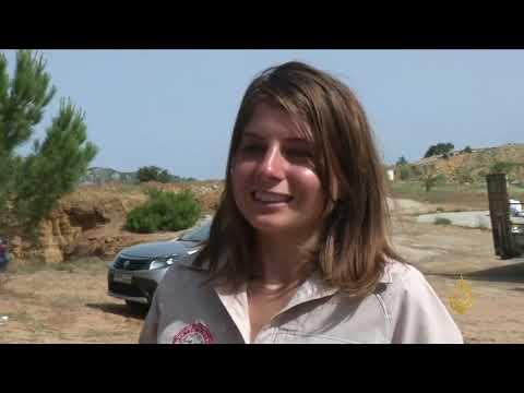هذا الصباح-جهود أهلية لترميم منازل أثرية بمحمية جبل موسى  - نشر قبل 2 ساعة