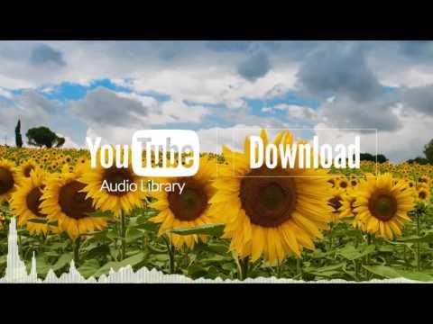 Greenery   Silent Partner   YouTube Audio Library