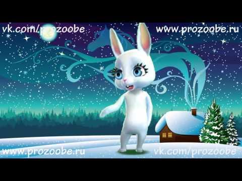 С Новым Годом Подруга! Красивое новогоднее поздравление от ZOOBE Зайки Домашней Хозяйки - Как поздравить с Днем Рождения