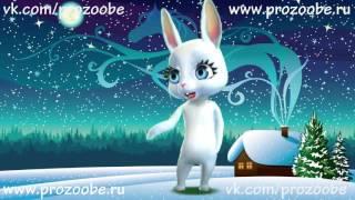 С Новым Годом Подруга! Красивое новогоднее поздравление от ZOOBE Зайки Домашней Хозяйки