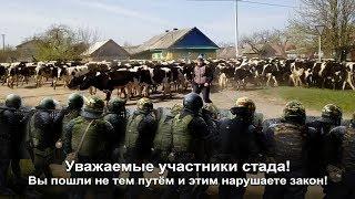 Будни Колхозников Или Омон В Помощь