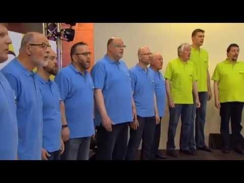 Choir - The Lion Sleeps Tonight (O Rei Leão / The Lion King)