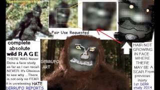 Bigfoot cases Review of DERRUFO