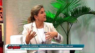 LOS HERMANOS - Constelaciones Familiares - Verónica Correa