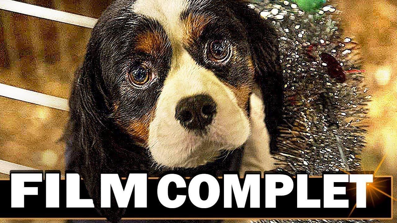 un incroyable talent film complet en francais famille chien