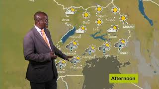 Weather forecast  by Africano for 26 02 2020