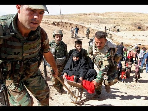 Islamic State driven out of last stronghold in northern Iraq | NCB
