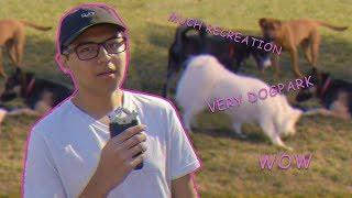 Westwood Recreation Center opens new dog park