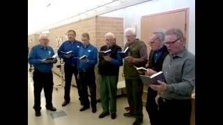 Mieskuoro Raavaat miehet laulaa