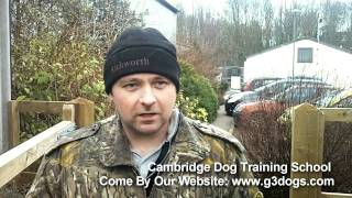 G3 Dogs - Cambridge Dog Training School - Testimonial