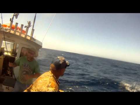 Mates Trip Offshore Jigging