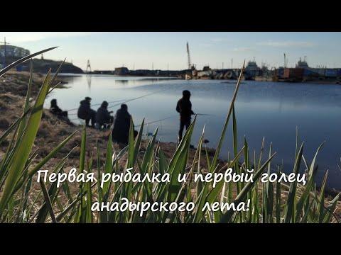 Первая рыбалка и первый голец анадырского лета! Река Казачка. Анадырь. Чукотка. Арктика.