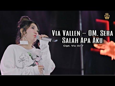 Download Lagu Mp3 Ilir 7 Dan Via Vallen Entah Apa Yang