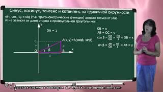 Синус, косинус, тангенс и котангенс на единичной окружности