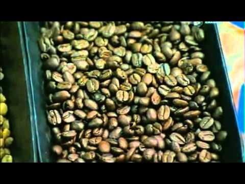 как делают растворимый кофе - YouTube