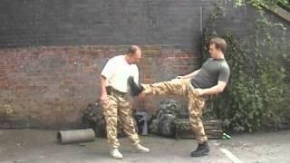 SAS Fight Secrets 2