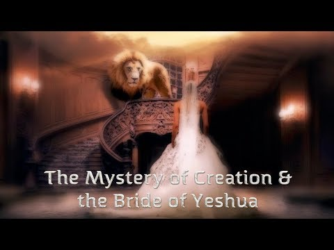 The Stunning Connection Between Creation & the Bride of Christ With Zev Porat