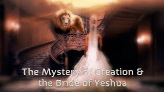 vuclip The Stunning Connection Between Creation & the Bride of Christ With Zev Porat