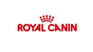 すべては犬と猫の健康のために。ロイヤルカナンは1968年の誕生以降、犬...