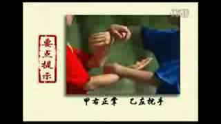 Aula onlline kung fu wing chun