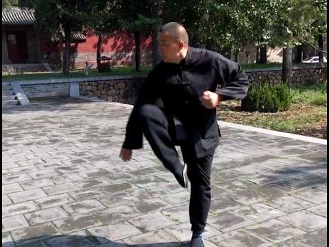 Xinyiba Master Hu Zhengsheng