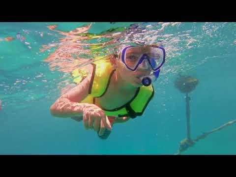Turtle Bay Sail & Snorkel Adventure, Charlotte Amalie, St. Thomas