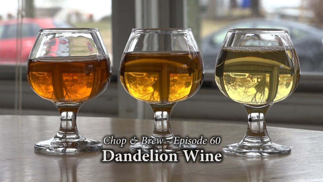 Mellow Yellow: How to Make Dandelion Wine   Root Simple