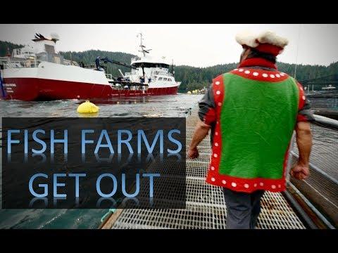 Chiefs Block Norwegian Fish Farm Vessel