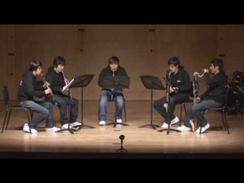 Rhapsody in blue - Clarinet quintet 'Caprice'